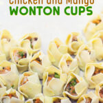 Chicken and Mango Wonton Cups