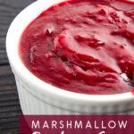 Marshmallow Raspberry Sauce