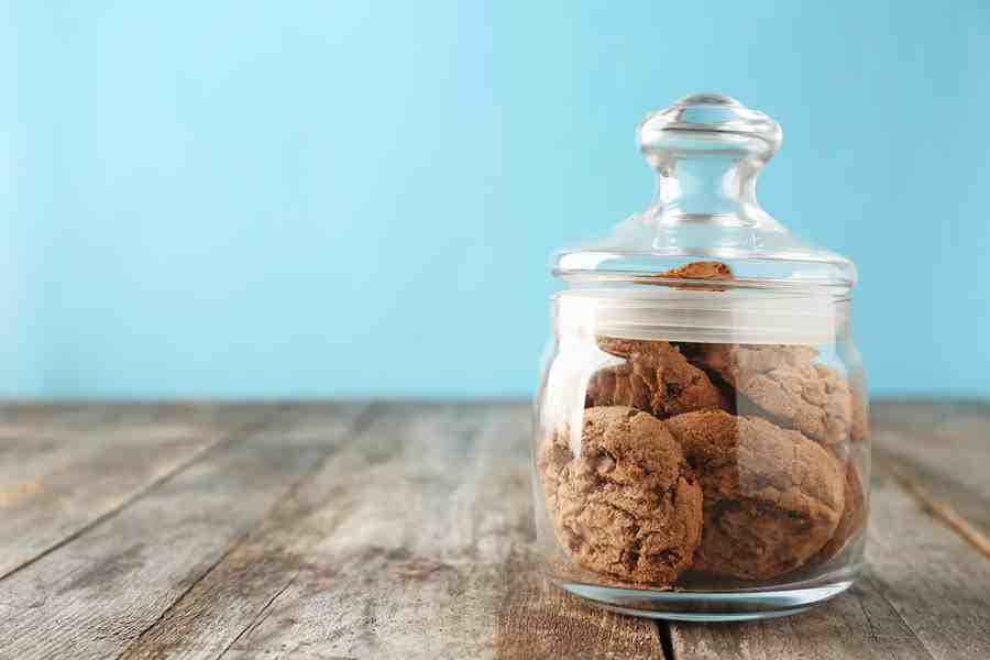 Biscuits in a Reuseable Container | Stay at Home Mum