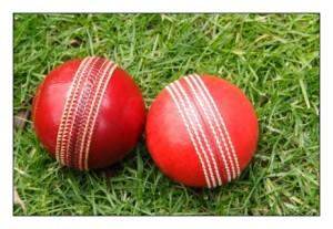 cricket balls1   Stay at Home Mum.com.au