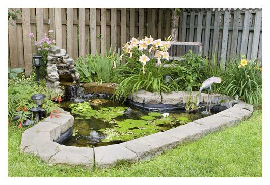 Building a fish pond stay at home mum for Building a fish pond