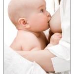 breastfeeding 21 | Stay at Home Mum.com.au