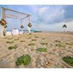 Save On Wedding Reception Costs