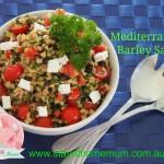 Mediterranean Barley Salad   Stay at Home Mum
