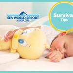Sea World Resort Survival Tips | Stay at Home Mum