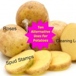 Ten Alternative Uses for Potatoes   Stay at Home Mum