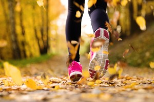 the dog ate my running shoes | stay at home mum