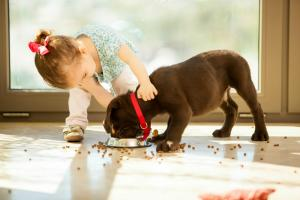 Health Benefits of Having Your Own Pet