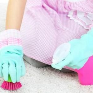 Homemade Carpet Shampoo