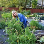 Common Garden Problems | Stay at Home Mum
