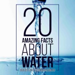 Facts About Water   Stay At Home Mum