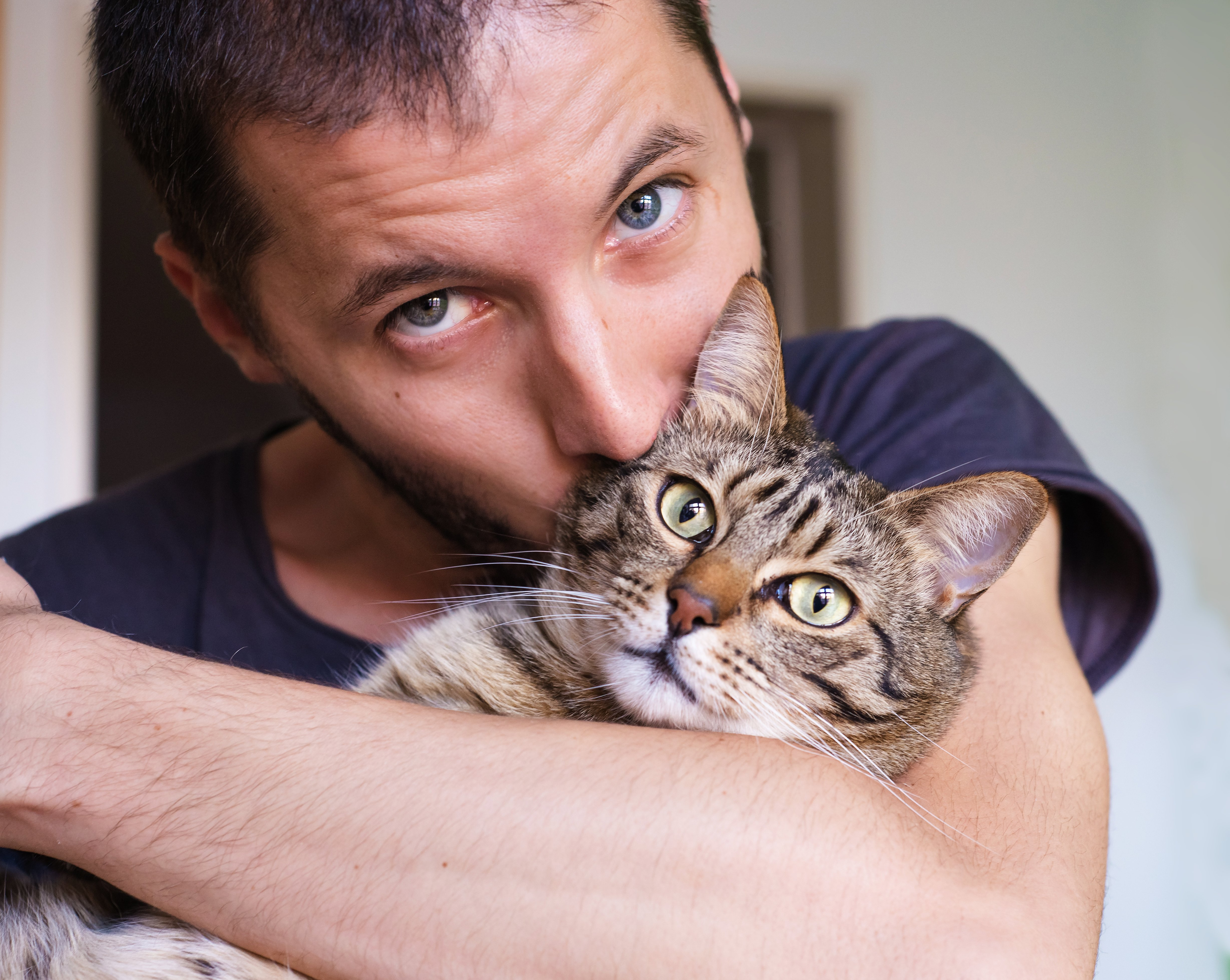 Hot Dudes With Kittens - The Purrfect Thing To See On