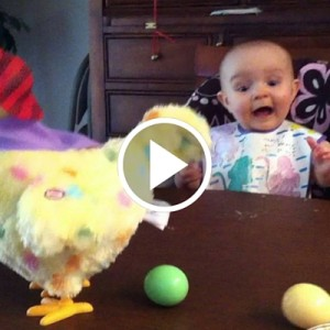 Baby's Cute Reaction to an Easter Hen Laying Eggs
