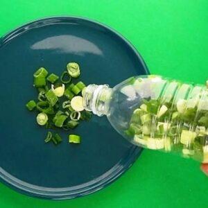 10 Genius Food Saving Hacks