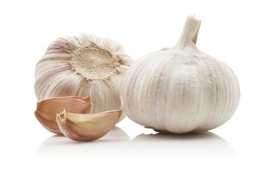 garlic-026