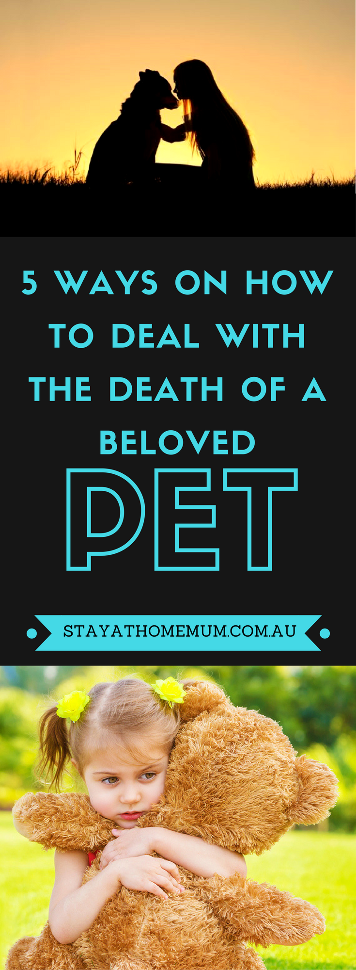5 Ways On How To Deal With The Death Of A Beloved Pet (1)