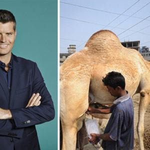 Celebrity Chef Pete Evans Slammed for Suggesting Camel Milk as Breast Milk Substitute