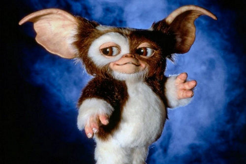 Before they turned into Gremlins after midnight, what were they called?