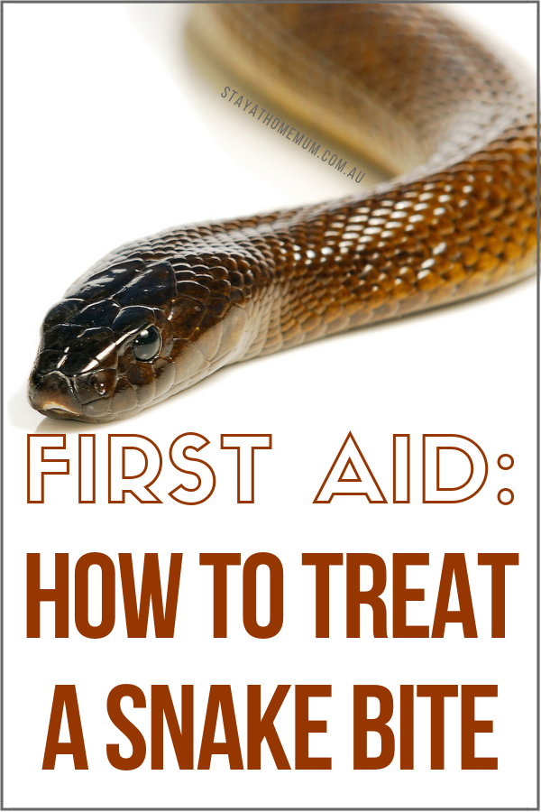 How To Treat A Snake Bite | Stay at Home Mum