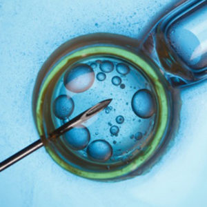 The Advancement Of Bulk-Billed IVF