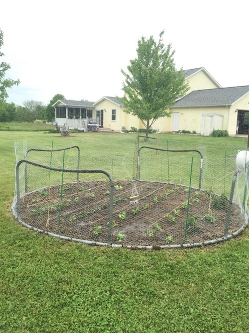 How to Repurpose a Trampoline   Stay at Home Mum