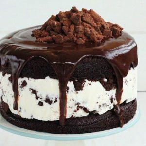 25 'Oh Soo Gooood!' Ice Cream Cakes