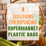 8 Solutions for Replacing Supermarket Plastic Bags