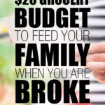 $20 Grocery Budget To Feed Your Family When You are Broke
