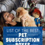 List of the Best Pet Subscription Boxes