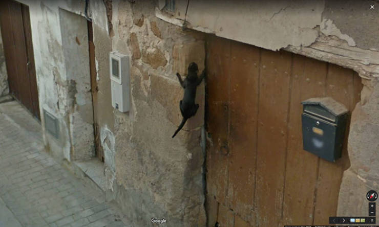 16 Funniest Photos Captured On Google Street View