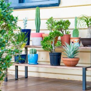Addicted to Gardening? Here's What You Should 'Gift' To Yourself!
